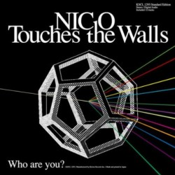 Who are you? NICO Touches the Walls