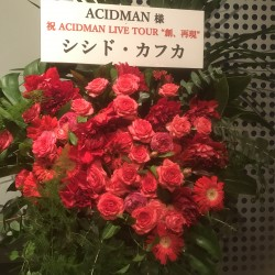 """ACIDMAN LIVE TOUR """"創、再現""""  Zepp Tokyo 2019.10.30"""