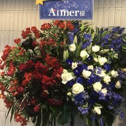 """Aimer Hall TOUR 19/20 """"rouge de bleu"""" 〜bleu de rouge〜 大宮ソニックシティ大ホール 2020.1.11"""