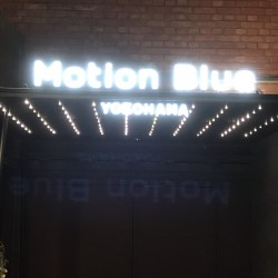 "THE PINBALLS 「Acoustic Session Live ""Dress Up 2 You""」 Blue Motion YOKOHAMA 2020.10.3"